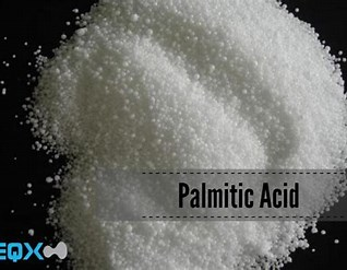 Image result for Palmitiinihappo