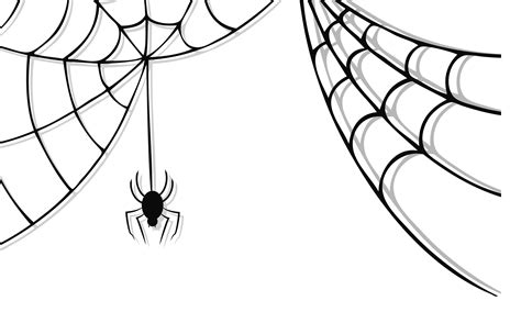 Image result for spider clip art