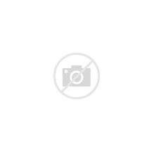 Resultado de imagen de monos rheus