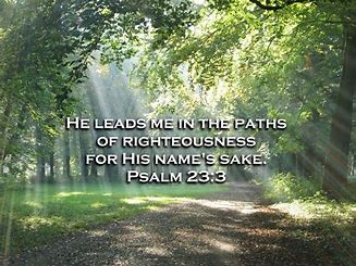 Image result for Lead me into paths of Righteousness