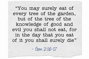 Image result for God told adam and eve not to eat of the tree