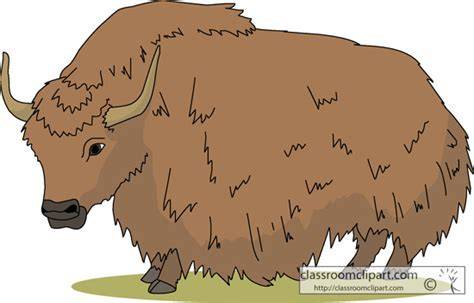 Image result for yak classroomclipart free