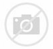 Image result for Dr Dan Kuebler