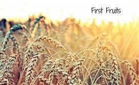 Image result for firstfruits pics