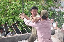 Image result for vietnamese christians