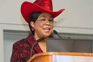Image result for images of frederica wilson
