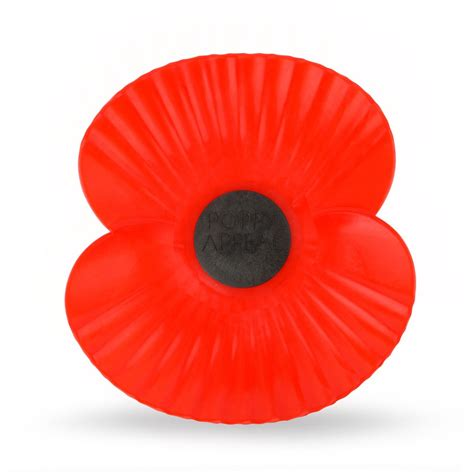 Image result for poppy remembrance