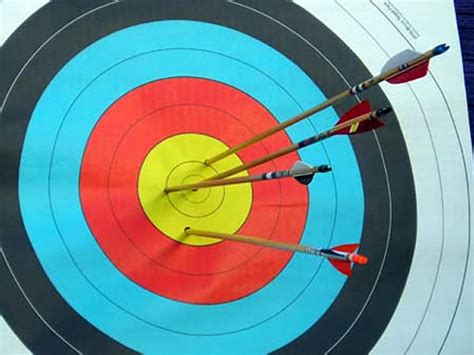 Image result for arrows hitting a bullseye