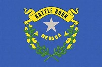 Image result for Nevada Flag Picture 2020