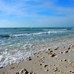 Image result for honeymoon island florida. Size: 149 x 149. Source: anotherwalkinthepark.com