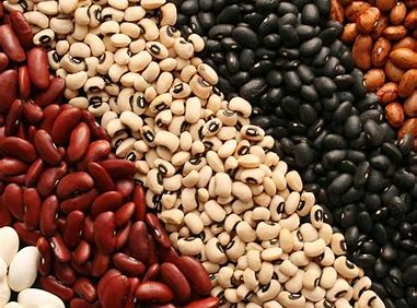 Image result for picture of beans