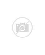 Image result for White Horse Revelation 19