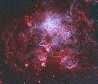 Tamaño de Resultado de imágenes de Nebulosa Tarántula.: 187 x 160. Fuente: observatorio.info