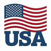 Image result for United States Flag