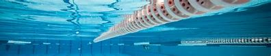 Image result for swimming banner