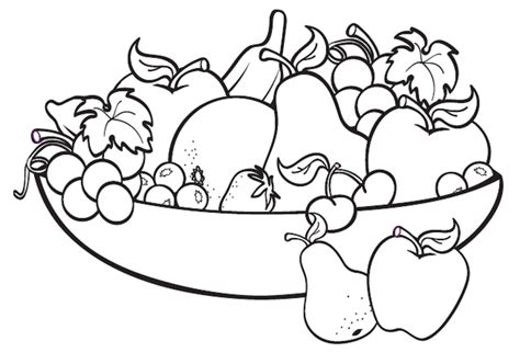 Image result for fruit drawing