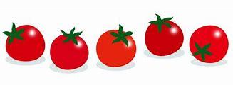 ミニトマト イラスト 無料 に対する画像結果