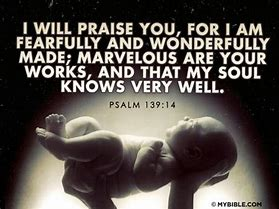 Image result for Psalm 139:14