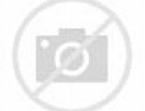 Image result for Damned Dam 230 Poison Lake Champlain