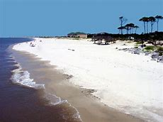 Image result for dauphin island alabama