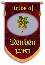 Image result for the israeli flag of ruben