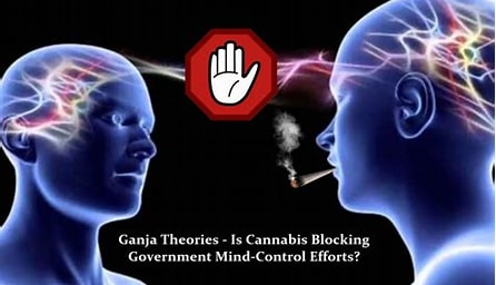Image result for Marijuana Mind Control. Size: 279 x 160. Source: cannabis.net