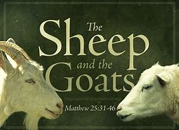 Image result for jesus sheep and goats parable