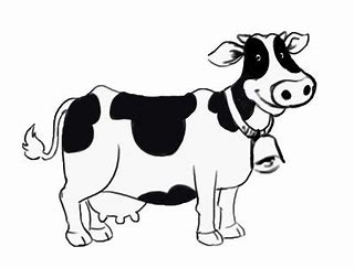 Image result for dairy cattle clip art