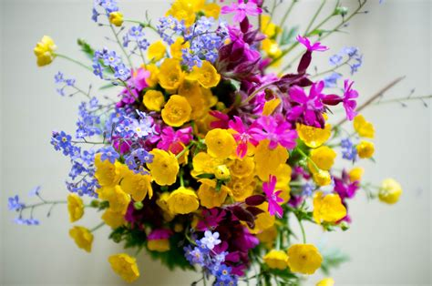Résultat d'images pour image de printemps