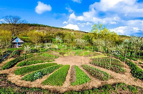 Image result for permaculture image