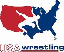 Image result for USA Wrestling Logo Vector