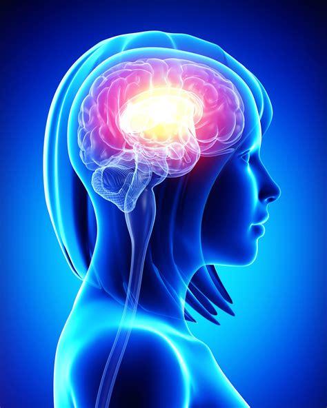 Myndaniðurstaða fyrir neurology