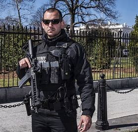 Image result for secret service
