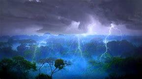 Image result for rainforest storm
