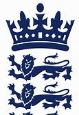 Image result for england cricket badge