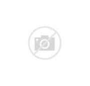 Image result for donnybrook with donegan