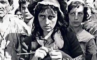 Image result for images of madame defarge knitting