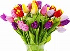 Image result for Bunch Of Flowers. Size: 143 x 103. Source: wallpapersdsc.net
