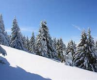 Nalezený obrázek pro zima