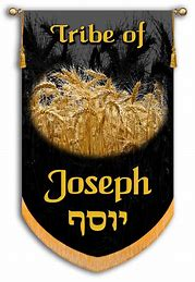Image result for The Banner of Joseph
