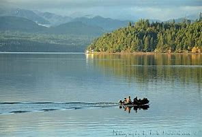 Image result for images hood canal wa