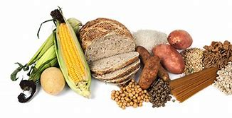 Image result for starchy carhohydrates