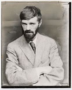 Image result for images dh lawrence