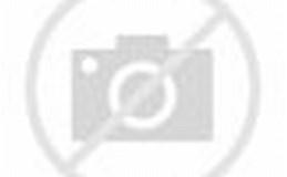 Image result for hình ảnh Trung Quốc Biển Đông