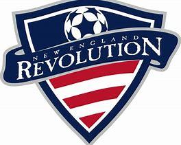 Image result for England Soccer Team Logo