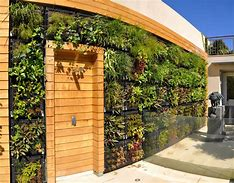 Image result for wall gardens images