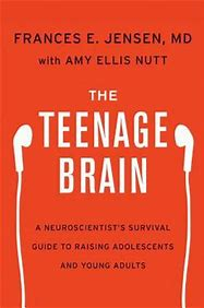 Image result for the teenage brain book