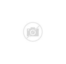 ドイツ マジパンチョコレート に対する画像結果