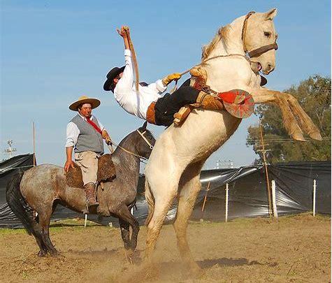 Resultado de imagen de imagenes de un caballo callendose con un ginete