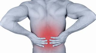 Image result for lumbar pain pics